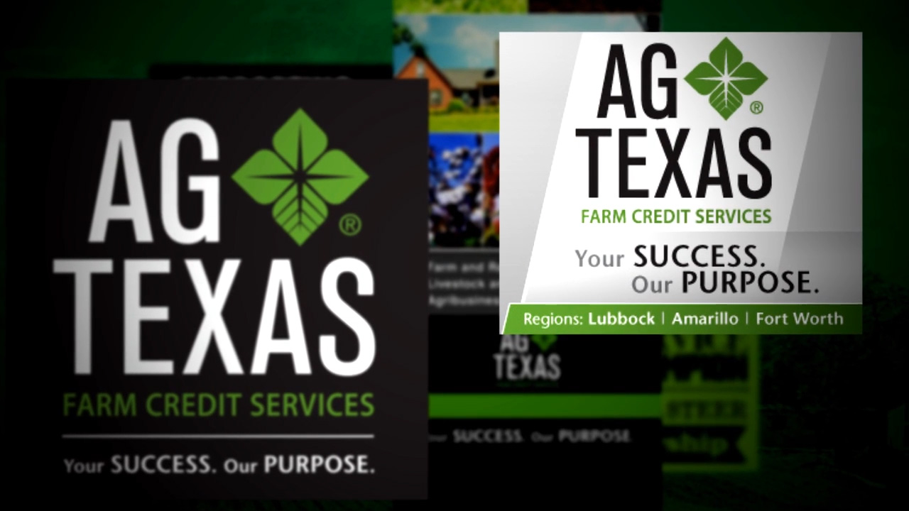 AG Texas e-Learning Initiative
